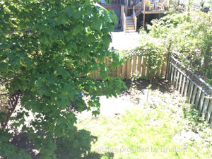 Room / Shared apartment for rent in Halifax
